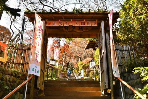 京王百草園201612