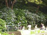 高幡不動0628-5