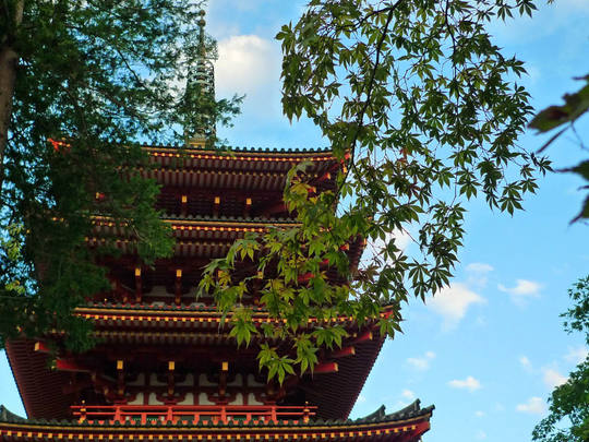 高幡不動尊20091003-4