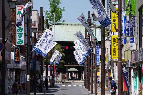 高幡不動尊201005-6