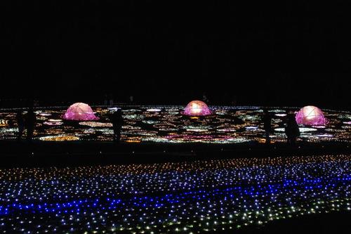 昭和記念公園イルミネーション201012-30