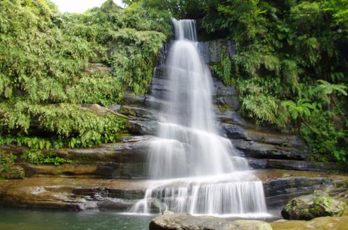 西表島ナーラの滝201108-10