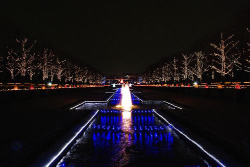 昭和記念公園イルミネーション201012-13