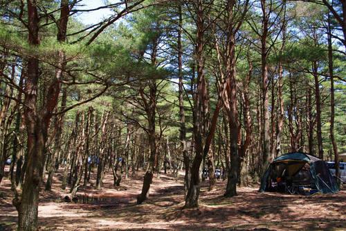 本栖湖キャンプ場201005-1