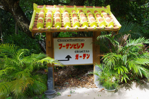 沖縄由布島2011-7