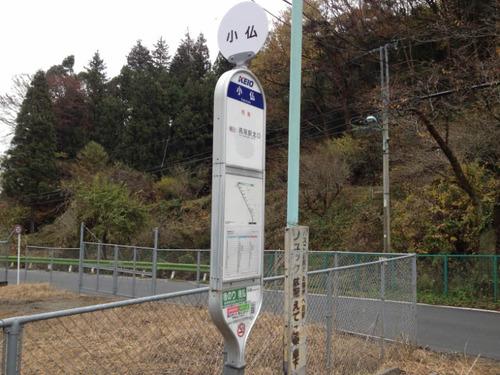 高尾山201111-1