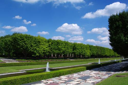 昭和記念公園201009-11