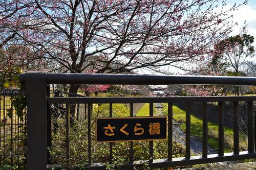 昭和記念公園201703