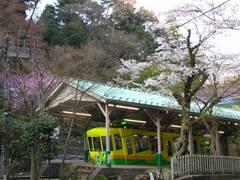 高尾山0904-8