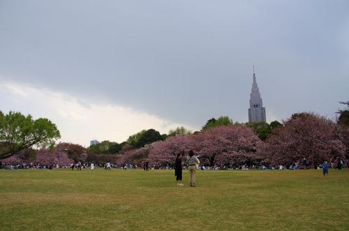 新宿御苑201104-12