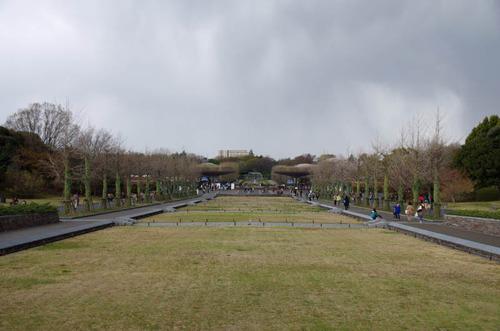 昭和記念公園201404-1