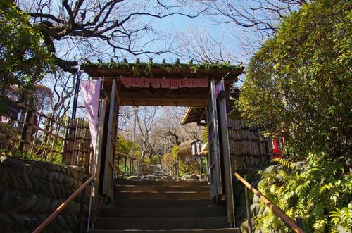 京王百草園201202-1