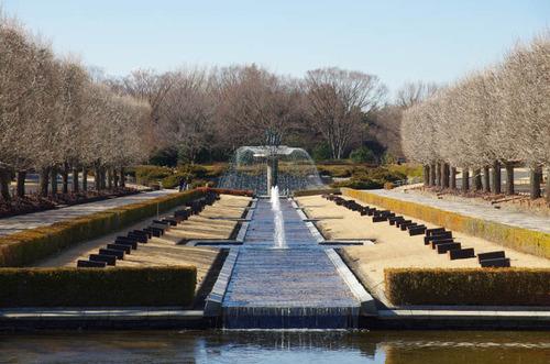 昭和記念公園201312−13