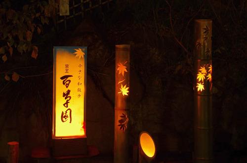 百草園紅葉ライトアップ201211-9