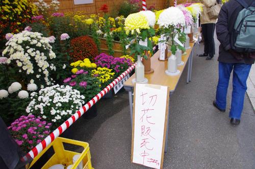 高幡不動201311-11