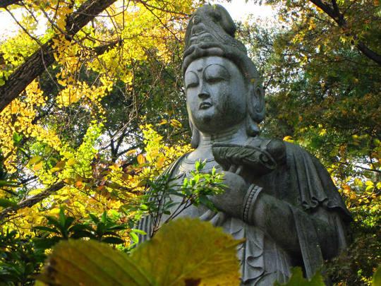 高幡不動尊20091107-5