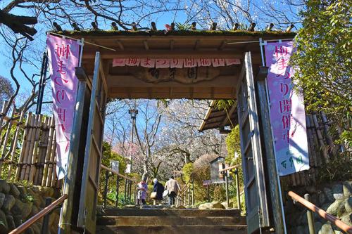 京王百草園201602-1