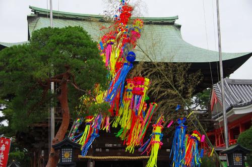 高幡不動あじさい201107-14