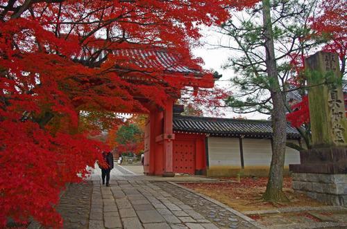 京都201307-3