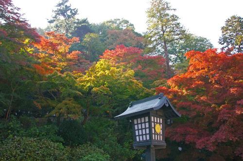 高幡不動201311-9