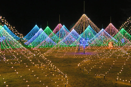 昭和記念公園201501-1
