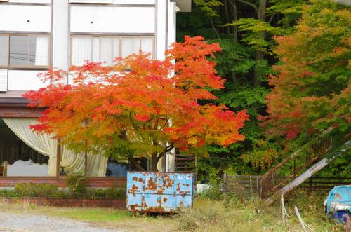 富士五湖の紅葉2013-9