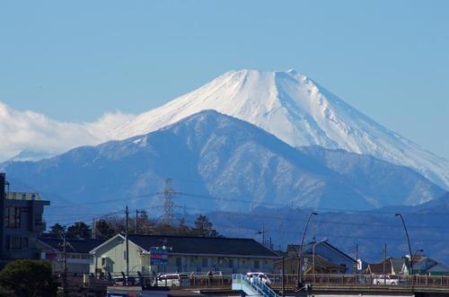高幡不動201312-13