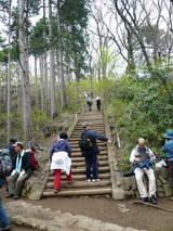 高尾山0420山頂前の階段