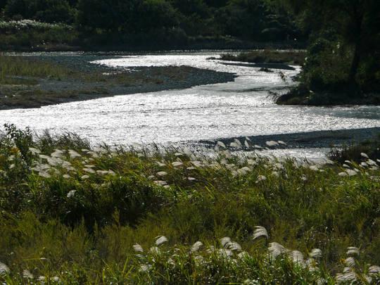 河川敷の風景-5