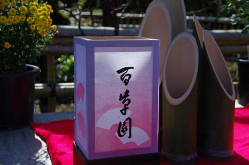 百草園201111-6