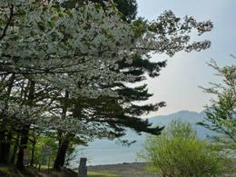 本栖湖湖畔0905-4