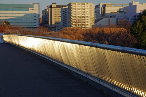 昭和記念公園201312−10