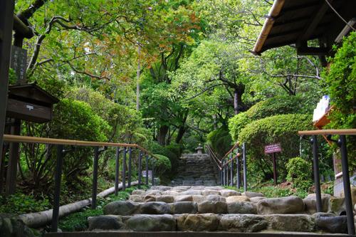 百草園201010-11