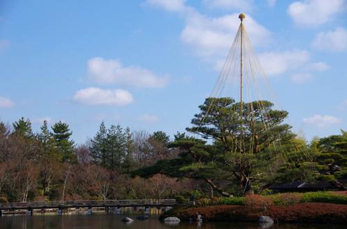 昭和記念公園201212-8