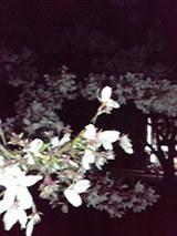 fdab9691.jpg