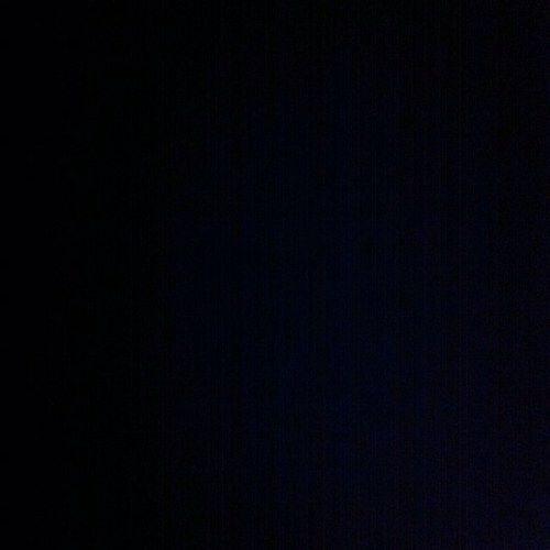 ヨシ君のブログ : 9/6は黒の日で...