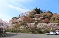 arashiyama200407