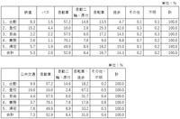wakayamashiH22PT