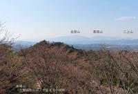 iwahashi2004