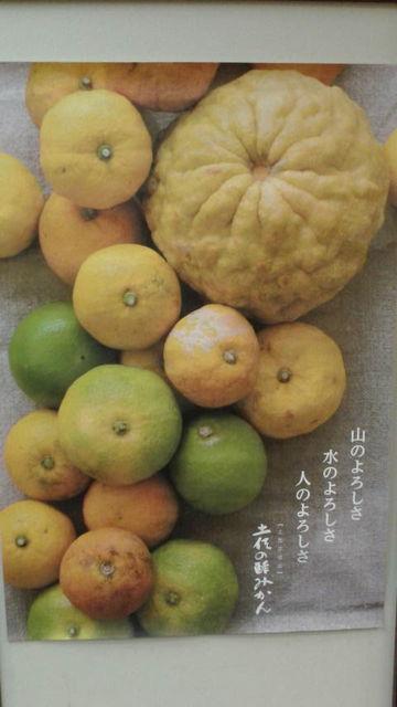 (1)酢みかんポスター
