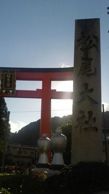 (11)松尾大社入り口鳥居