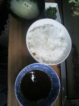 甘いタレとご飯中盛り.jpg