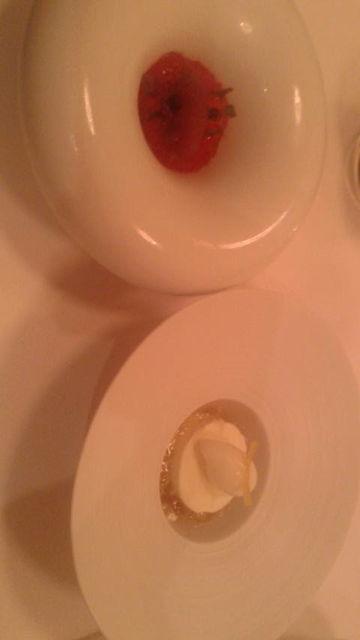 (11)レモンシャーベット、ブドウアイス