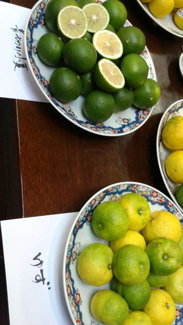 (2)柚子と青切り小夏