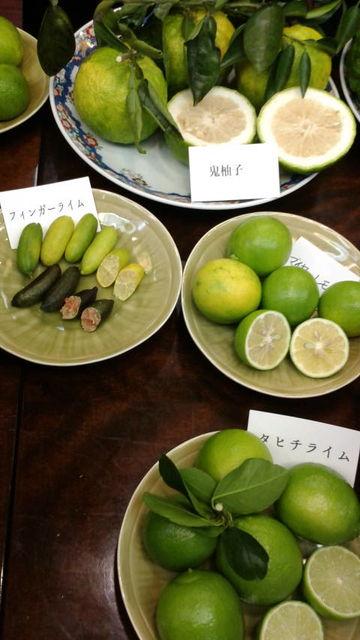 (9)鬼柚子、レモン等々