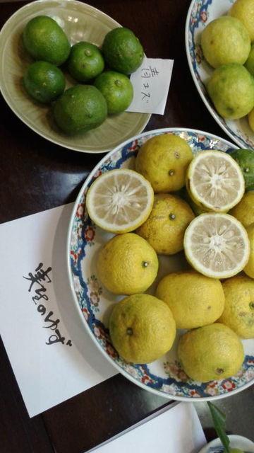 (3)青柚子と実生柚子