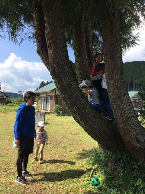 写真32 木に登る子供