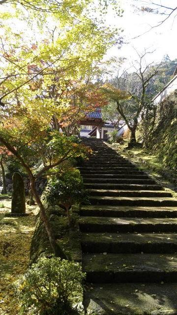 (13)青源寺手前の石段の紅葉