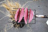 2008.4.24カツオのワラ焼き