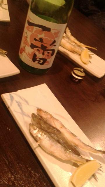 (12)「一蕾」とシシャモ